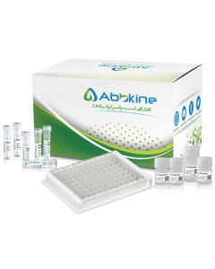 Fish Acetylcholinesterase (ACHE) ELISA Kit