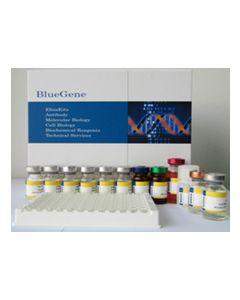 Human Cytoplasmic aconitate hydase (ACO1) ELISA Kit