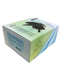 Goat Immunoglobulin G (IgG) CLIA Kit